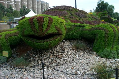 Topiary Garden: Giant Tortoise